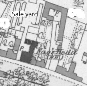 Map showing Nag's Head and sale yard
